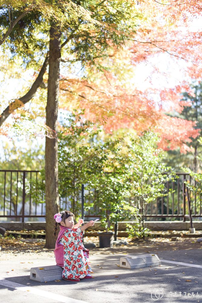 南沢氷川神社での七五三出張撮影