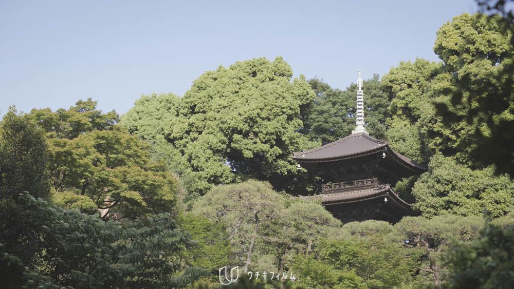 2018.04 ホテル椿山荘東京での結婚式